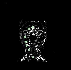 visage rouleau jade pimargane